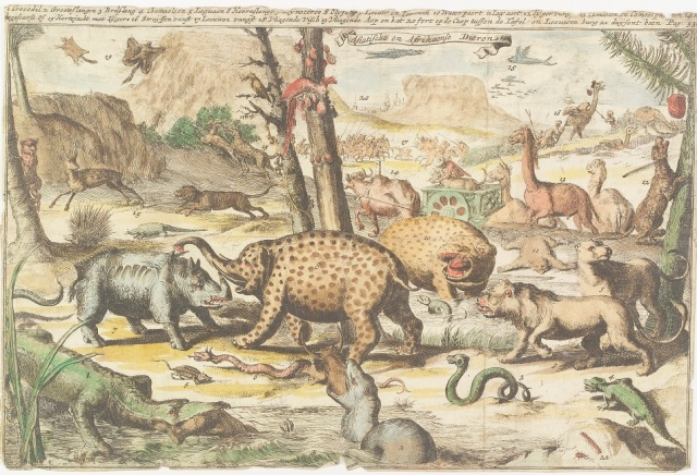 Zeeuws Archief : Asian and African animals, 1770-1780. Cat.nr. HTAM-H-104.